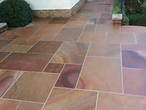 Sawn and Polished Fossil Sandstone
